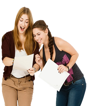 Essay, assignment help